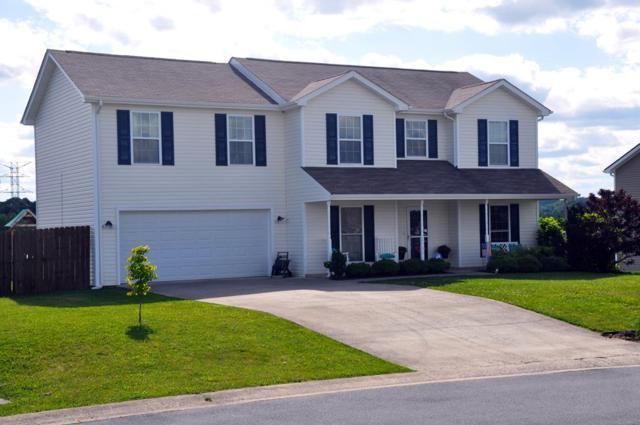 2305 Fox Meadows Cr., Bluff City, TN 37618 (MLS #69223) :: Highlands Realty, Inc.