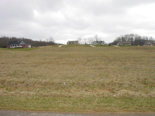 TR. 30 Snaffle Bit Lane, Bristol, VA 24202 (MLS #28566) :: Highlands Realty, Inc.