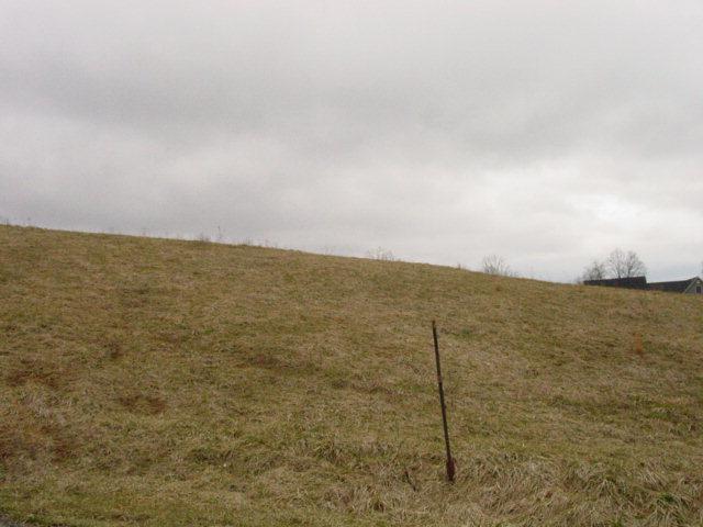 TR. 32 Snaffle Bit Lane, Bristol, VA 24202 (MLS #28567) :: Highlands Realty, Inc.