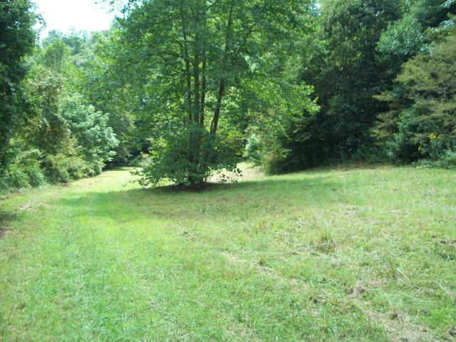 000 Rainbow Trout Lane, Woodlawn, VA 24352 (MLS #30585) :: Highlands Realty, Inc.