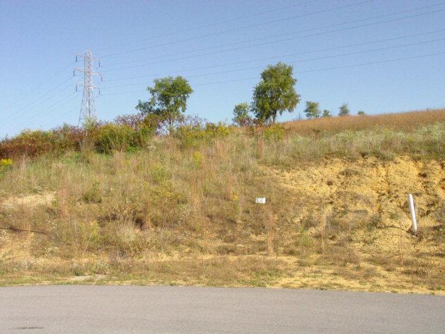 LOT #38 Lariat Drive, Abingdon, VA 24210 (MLS #35261) :: Highlands Realty, Inc.