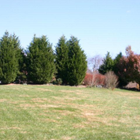 TBD Landridge, Abingdon, VA 24211 (MLS #42637) :: Highlands Realty, Inc.