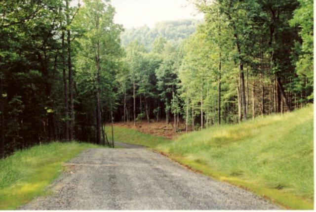 TBD Devon Ridge Rd, Woodlawn, VA 24381 (MLS #44284) :: Highlands Realty, Inc.
