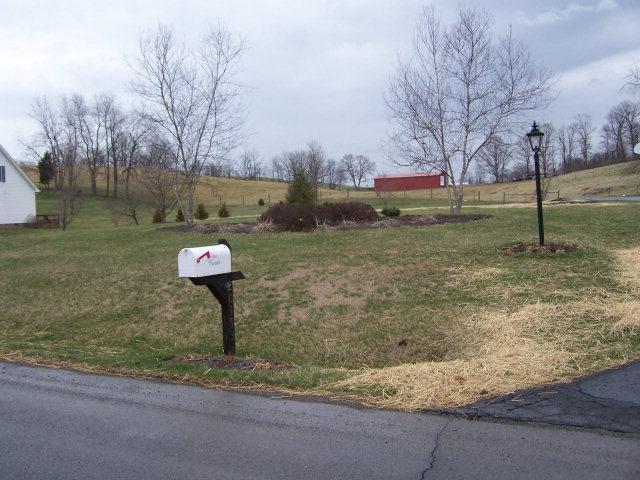 20193 Colony Lane, Bristol, VA 24202 (MLS #45714) :: Highlands Realty, Inc.