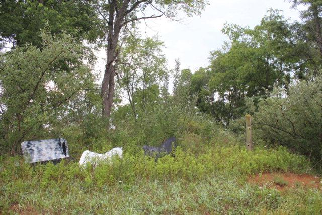 XXX Sunny Road, Max Meadows, VA 24360 (MLS #47488) :: Highlands Realty, Inc.