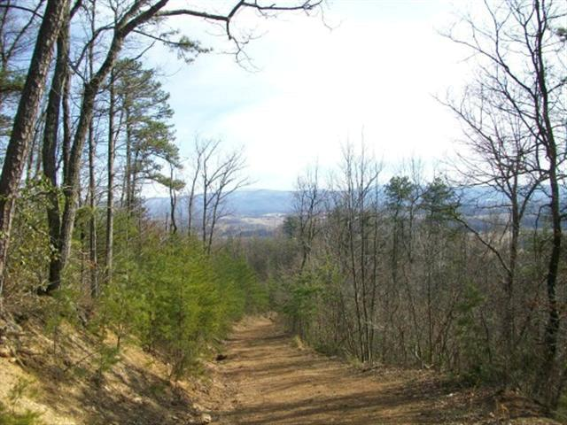 000 Middle Fork Road, Chilhowie, VA 24319 (MLS #48026) :: Highlands Realty, Inc.