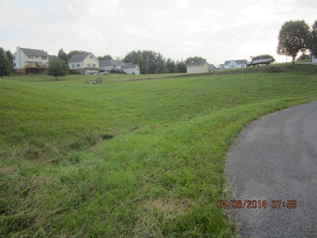 TBD Oak Circle Drive, Rosedale, VA 24820 (MLS #48302) :: Highlands Realty, Inc.