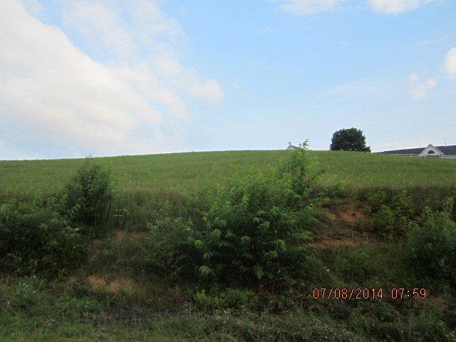 TBD Oak Circle Drive, Rosedale, VA 24820 (MLS #48305) :: Highlands Realty, Inc.