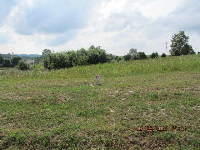 TBD Riley St, Lebanon, VA 24266 (MLS #52280) :: Highlands Realty, Inc.