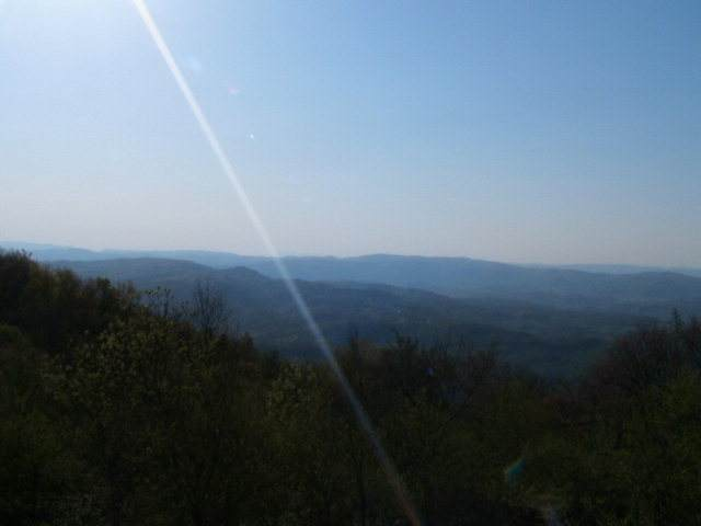 P-5 Point Lookout Ln. - Photo 1