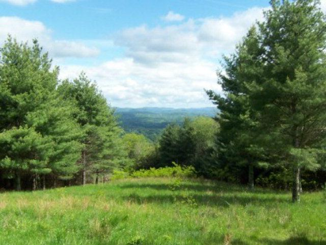 TBD Blue Jay Lane, Mouth of Wilson, VA 24363 (MLS #54397) :: Highlands Realty, Inc.