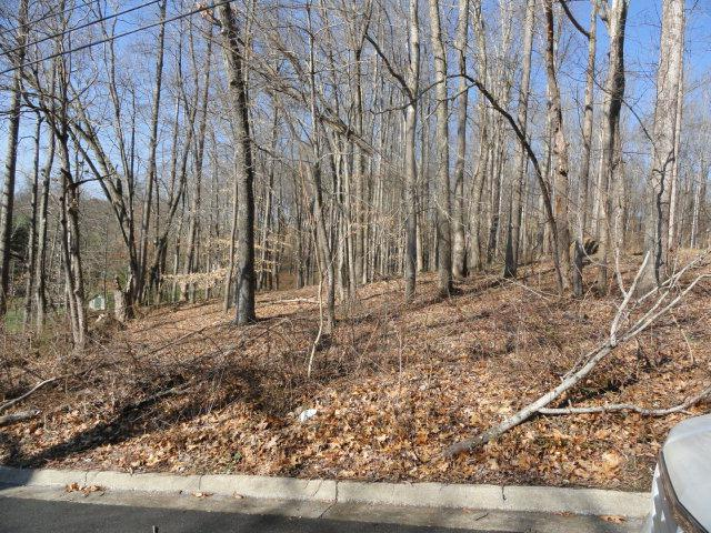 TBD Prater Lane, Marion, VA 24354 (MLS #54629) :: Highlands Realty, Inc.