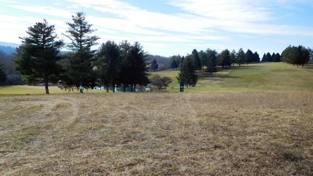 TBD Allison Lane, Wytheville, VA 24382 (MLS #58425) :: Highlands Realty, Inc.