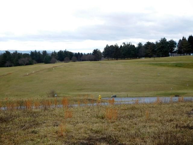 TBD Caroline Circle, Wytheville, VA 24382 (MLS #58533) :: Highlands Realty, Inc.