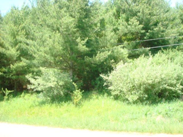 TBD Oak Ridge Dr - Photo 1