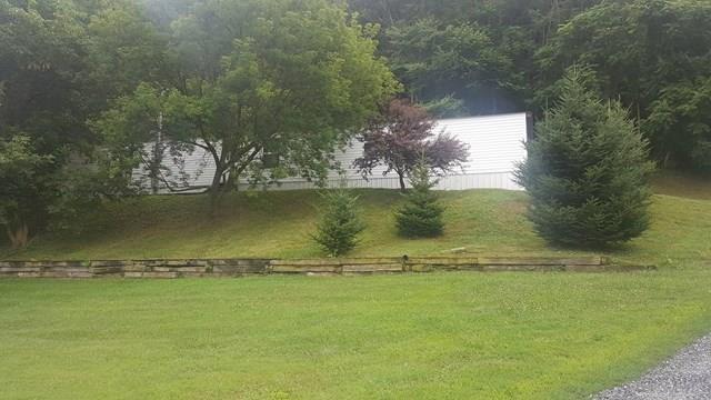 510 Hutton Branch Road, Marion, VA 24354 (MLS #61248) :: Highlands Realty, Inc.