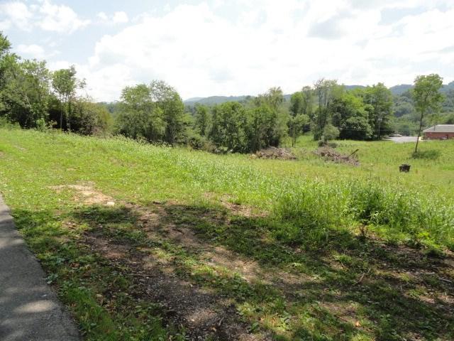 TBA Althea Street, Marion, VA 24354 (MLS #61349) :: Highlands Realty, Inc.
