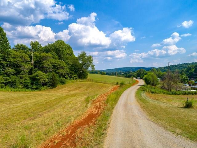Lot 12 Bald Meadow Lane, Barren Springs, VA 24313 (MLS #61372) :: Highlands Realty, Inc.