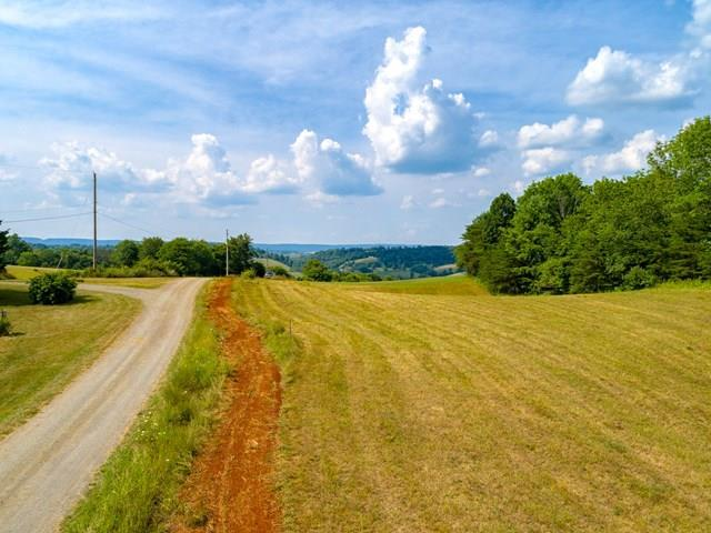 Lot 13 Bald Meadow Lane, Barren Springs, VA 24313 (MLS #61373) :: Highlands Realty, Inc.
