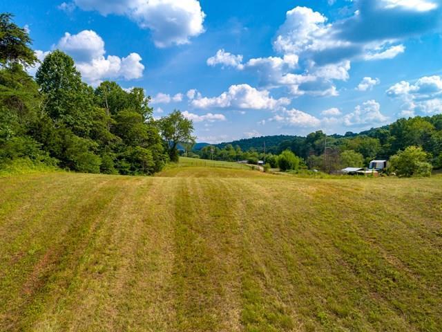 L 11-13 Bald Meadow Lane, Barren Springs, VA 24313 (MLS #61374) :: Highlands Realty, Inc.