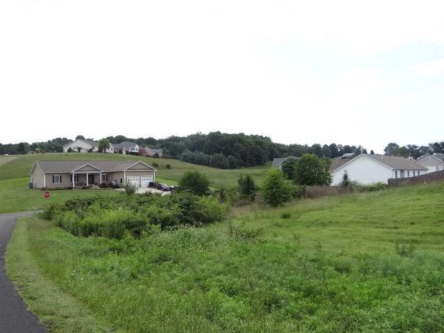0 Bridle Drive, Abingdon, VA 24210 (MLS #61686) :: Highlands Realty, Inc.