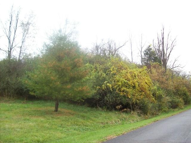 N/A Grubmore Road, Marion, VA 24354 (MLS #62518) :: Highlands Realty, Inc.