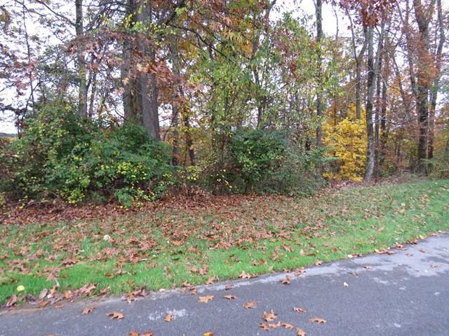 lot 46 Stonewall Ridge, Bristol, VA 24202 (MLS #62567) :: Highlands Realty, Inc.