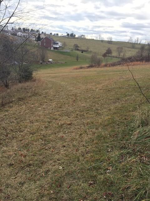 TBD Wythe View Ln, Wytheville, VA 24382 (MLS #62915) :: Highlands Realty, Inc.