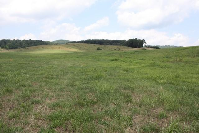 TBD Reedy Creek Rd, Lot 6, Bristol, VA 24201 (MLS #63210) :: Highlands Realty, Inc.