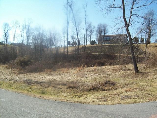 0 Medallion Drive, Glade Spring, VA 24340 (MLS #63258) :: Highlands Realty, Inc.