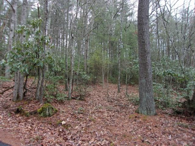 TBD Pinecrest Drive, Galax, VA 24333 (MLS #63434) :: Highlands Realty, Inc.