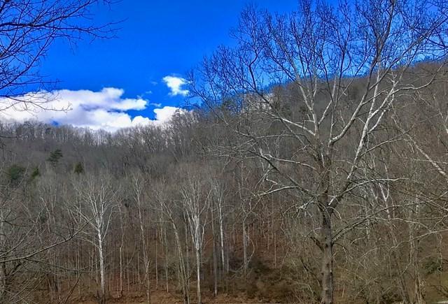 TBD North Fork River Rd, Abingdon, VA 24210 (MLS #63458) :: Highlands Realty, Inc.