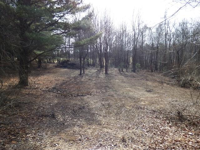 TBD Evergreen Trail, Fancy Gap, VA 24328 (MLS #63603) :: Highlands Realty, Inc.
