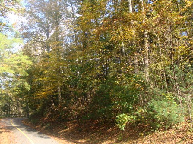 TBD Otter Creek Trail, Fancy Gap, VA 24328 (MLS #64377) :: Highlands Realty, Inc.