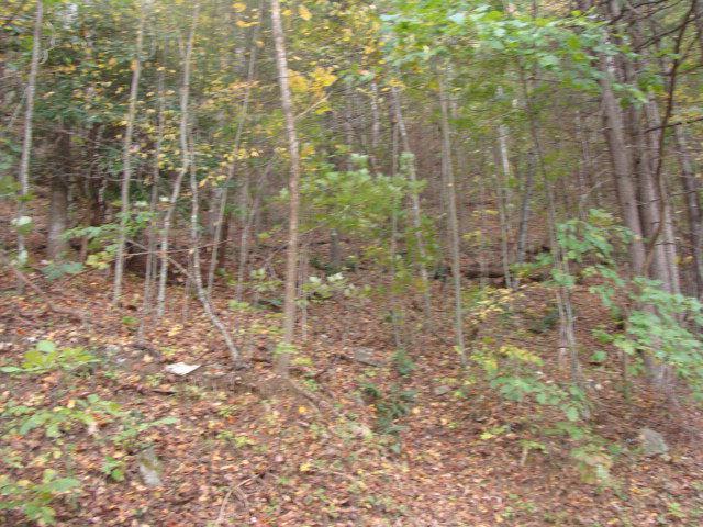 TBD Cascade Trail, Fancy Gap, VA 24328 (MLS #64378) :: Highlands Realty, Inc.