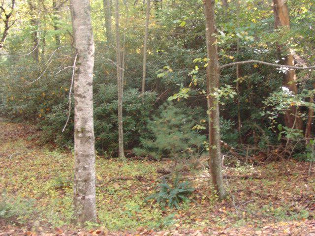 TBD Beaver Trail, Fancy Gap, VA 24328 (MLS #64380) :: Highlands Realty, Inc.