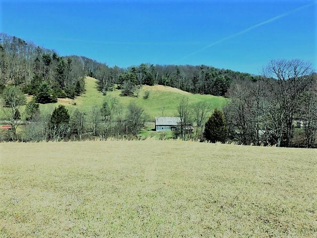 TBD Mill Creek Road, Chilhowie, VA 24319 (MLS #64416) :: Highlands Realty, Inc.