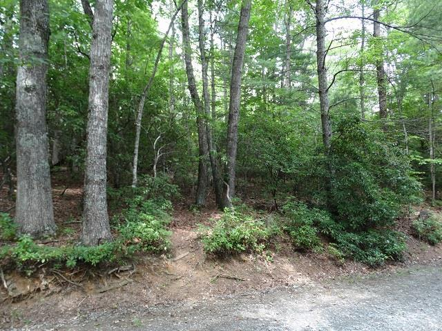 TBD Forestgreen Drive, Galax, VA 24333 (MLS #65504) :: Highlands Realty, Inc.