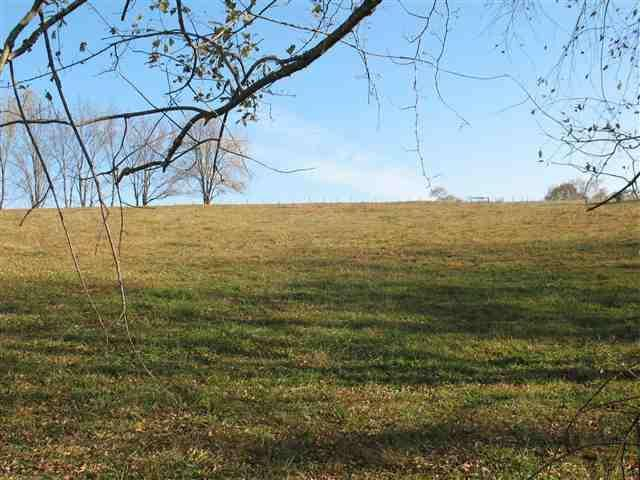 TBD Country Lane, Chilhowie, VA 24319 (MLS #65604) :: Highlands Realty, Inc.