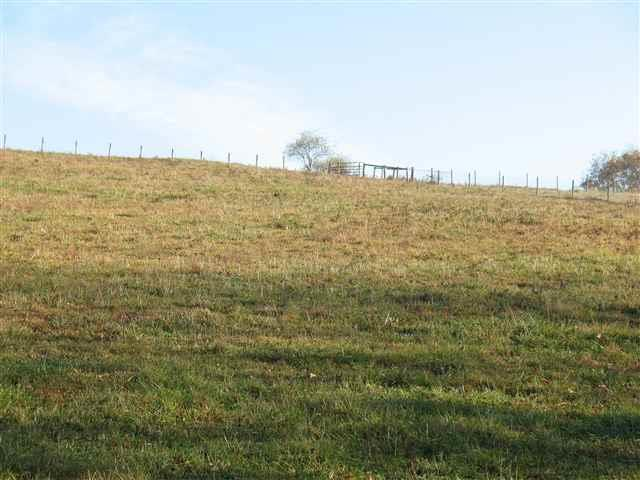 TBD Country Lane, Chilhowie, VA 24319 (MLS #65605) :: Highlands Realty, Inc.