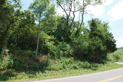 TBD Lead Mine Rd, Austinville, VA 24312 (MLS #65725) :: Highlands Realty, Inc.