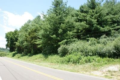 TBD Lead Mine Rd, Austinville, VA 24312 (MLS #65745) :: Highlands Realty, Inc.