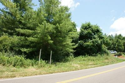 TBD Lead Mine Rd, Austinville, VA 24312 (MLS #65747) :: Highlands Realty, Inc.
