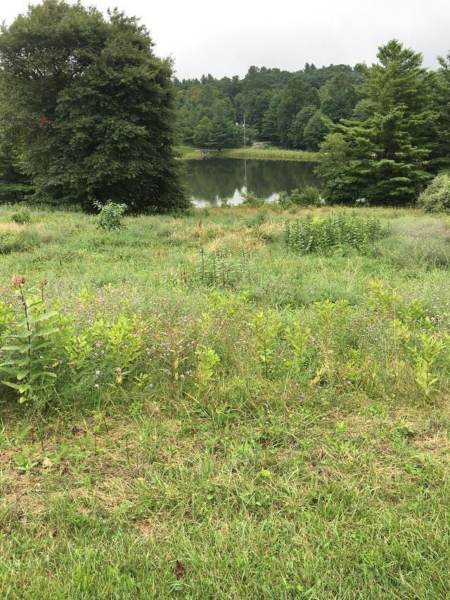 TBD Skyland Lakes Dr., Fancy Gap, VA 24328 (MLS #65919) :: Highlands Realty, Inc.