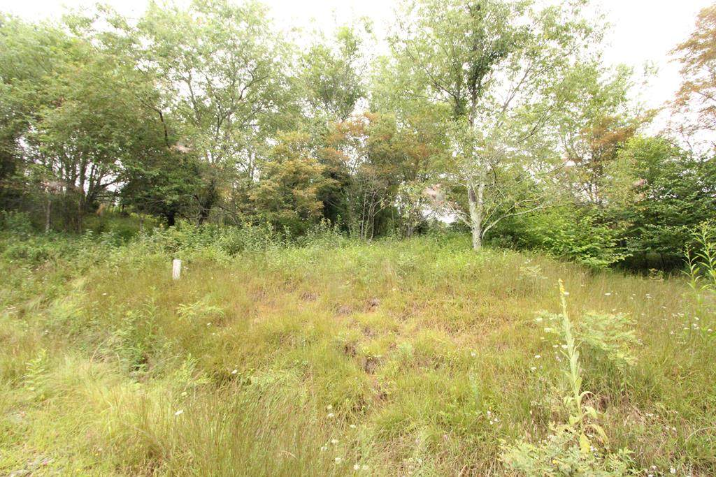 132 Point Lookout Ln. - Photo 1