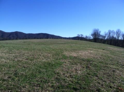 TBD Us Hwy 19, Lebanon, VA 24266 (MLS #67410) :: Highlands Realty, Inc.