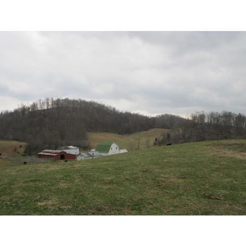 NA Washington Ave, Marion, VA 24354 (MLS #67790) :: Highlands Realty, Inc.