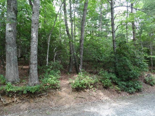 TBD Forestgreen Drive, Galax, VA 24333 (MLS #69221) :: Highlands Realty, Inc.