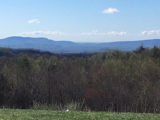 TBD Continental Drive, Hillsville, VA 24343 (MLS #69507) :: Highlands Realty, Inc.