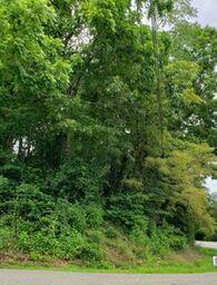 2 Acres Lee Hwy, Max Meadows, VA 24360 (MLS #70057) :: Highlands Realty, Inc.